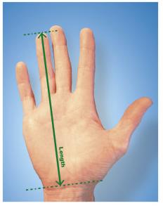 käe pikkuse mõõtmine