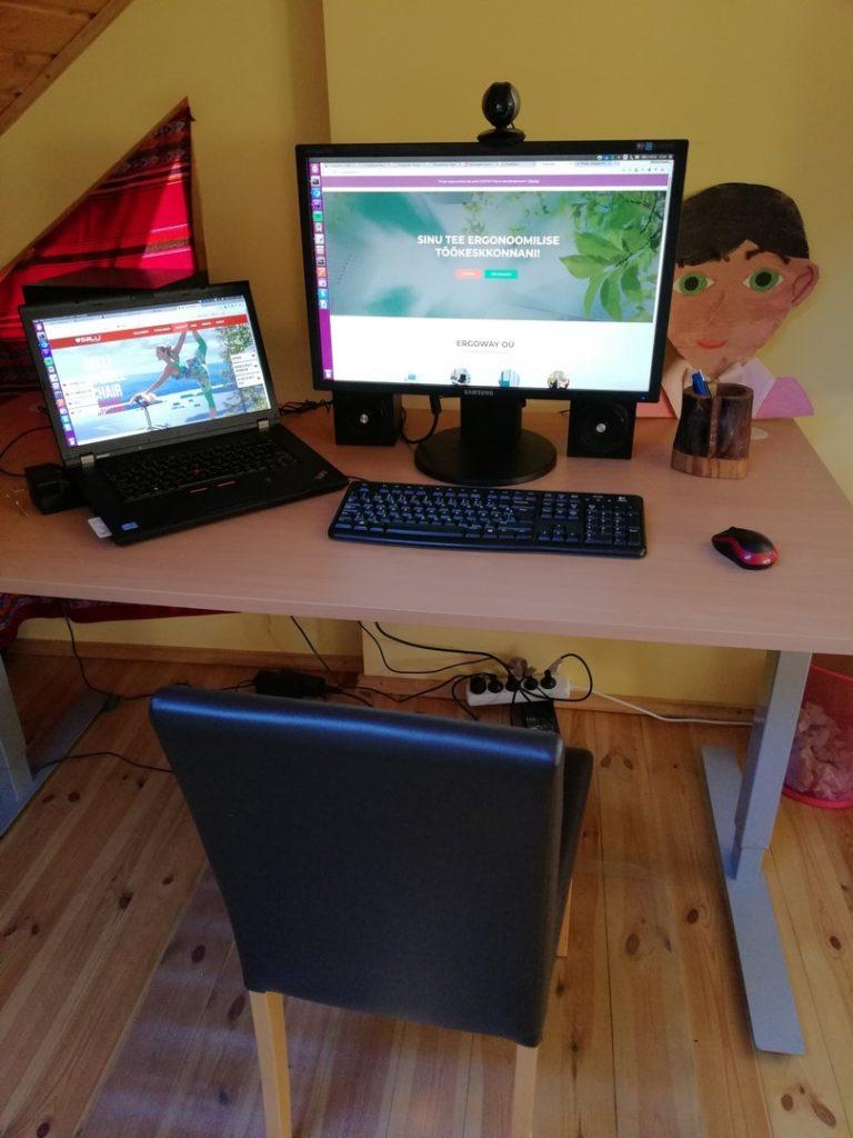 Ergoway ergonoomika salli sadultool ergonoomiline istumine kontor mugav tervislik eurerg triinusirge sadultool swing twin tervis kodukontor