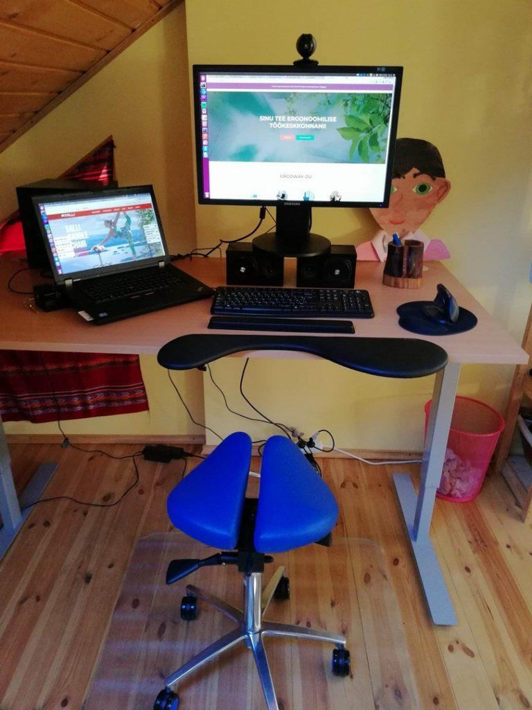 Ergoway ergonoomika salli sadultool ergonoomiline istumine kontor mugav tervislik eurerg triinusirge sadultool swing twin triinu sirge